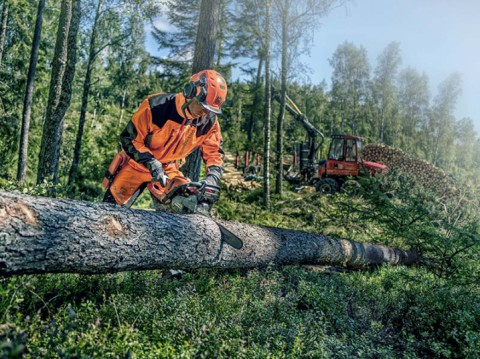 History of the Chainsaw - Celebrating 60 Years